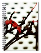 The Branches Naked By Wind And Rain. Spiral Notebook