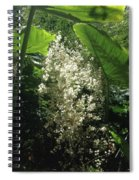 The Breath Of Fairies  Spiral Notebook