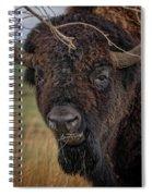 The Buffalo 2 Spiral Notebook