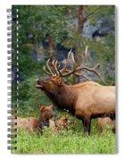 The Bugling Bull Elk Spiral Notebook