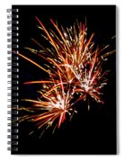 The Burst Spiral Notebook