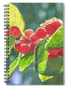 The Bush With The Red Berries Spiral Notebook