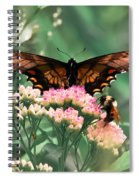 The Butterfly And The Bumblebee Spiral Notebook