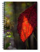 The Calling Of Fall Spiral Notebook