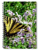 The Canadian Tiger Swallowtail Spiral Notebook