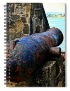 The Cannon  Spiral Notebook
