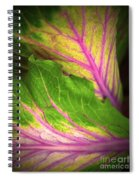 The Caress Spiral Notebook