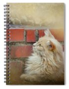 The Cat And The Mouse Spiral Notebook