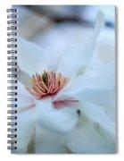 The Center Of Beauty Spiral Notebook