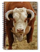The Challenge Spiral Notebook