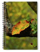 The Changing Season Spiral Notebook