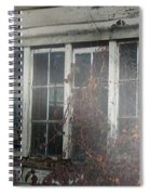 The Child At The Window Spiral Notebook