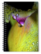 The Color Of Rain Spiral Notebook