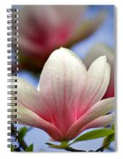 The Color Of Spring Spiral Notebook