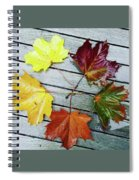 The Colours Of Autumn Spiral Notebook