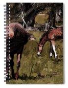 the Colt Spiral Notebook