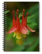 The Columbine Spiral Notebook