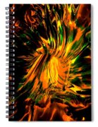 The Coming Of Thunder Spiral Notebook