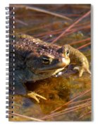 The Common Toad 1 Spiral Notebook