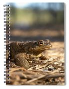 The Common Toad 4 Spiral Notebook
