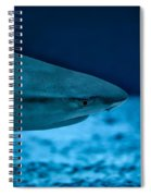 The Constant Search For Food Spiral Notebook