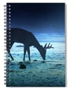 The Cool Of The Night - Square Spiral Notebook