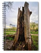The Cottonwood Spiral Notebook