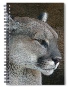 The Cougar Spiral Notebook