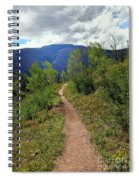 The Crooked Path Spiral Notebook