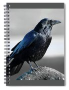 The Crow Spiral Notebook