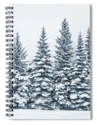 The Crown Of Winter Spiral Notebook