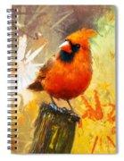 The Curious Cardinal Spiral Notebook