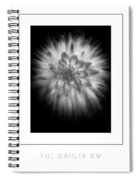 The Dahlia Bw Poster Spiral Notebook