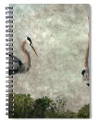 The Dance Of Life - Great Blue Herons In Mating Ritual - Digital Painting Spiral Notebook