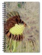 The Dandelion Nucleus Spiral Notebook