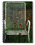 The Devils Chair Spiral Notebook