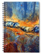 The Division Spiral Notebook