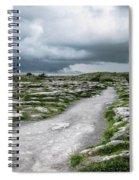 The Dolmen In The Burren Spiral Notebook