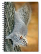 The Down Side Spiral Notebook