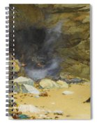 The Dragon's Cave Spiral Notebook