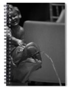 The Drake Fountain Spiral Notebook
