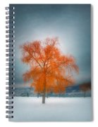 The Dreams Of Winter Spiral Notebook