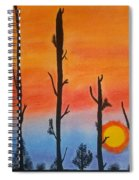 The Dryest Sunset Spiral Notebook