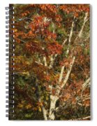 The Dying Leaves' Final Passion Spiral Notebook