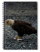 The Eagle And Its Prey Spiral Notebook