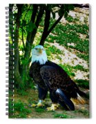 The Eagle Has Landed Spiral Notebook