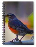 The Early Bird Spiral Notebook
