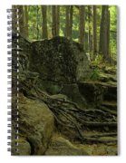 The Enchanted Forest Spiral Notebook