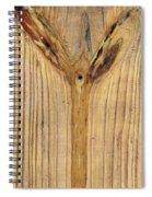 The Evil Eye 2 Spiral Notebook