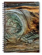The Eye In The Wood Spiral Notebook